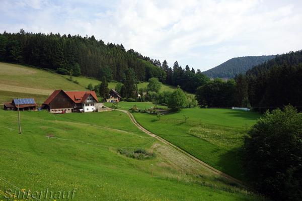 Radeln im tiefen Schwarzwald