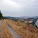 Auf dem Mainwanderweg bei Zellingen
