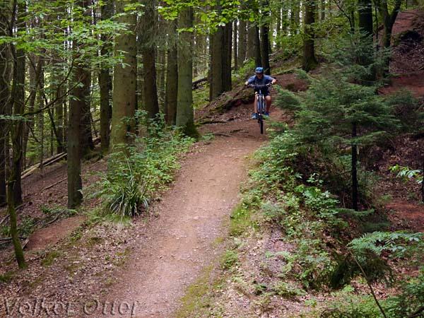 Mountainbiken mit Kind