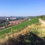 Blick auf Ochsenfurt