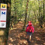 Der Mainwanderweg und andere Wanderwege