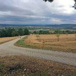 Blick vom Kraiberg zurück zum Main