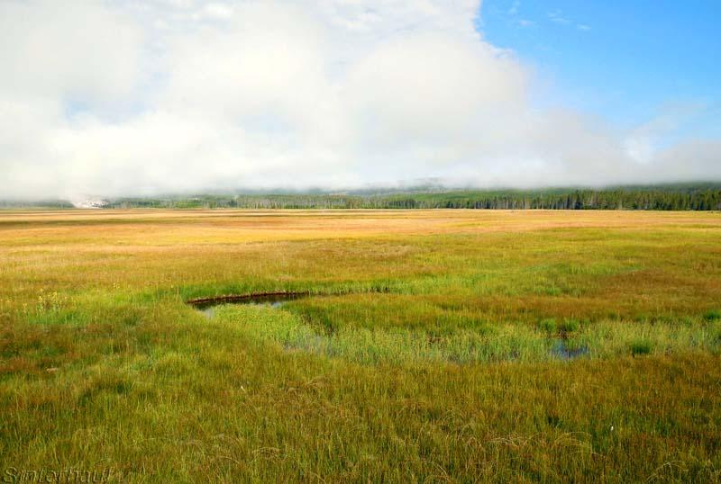 Unendliche Weiten im Yellowstone NP