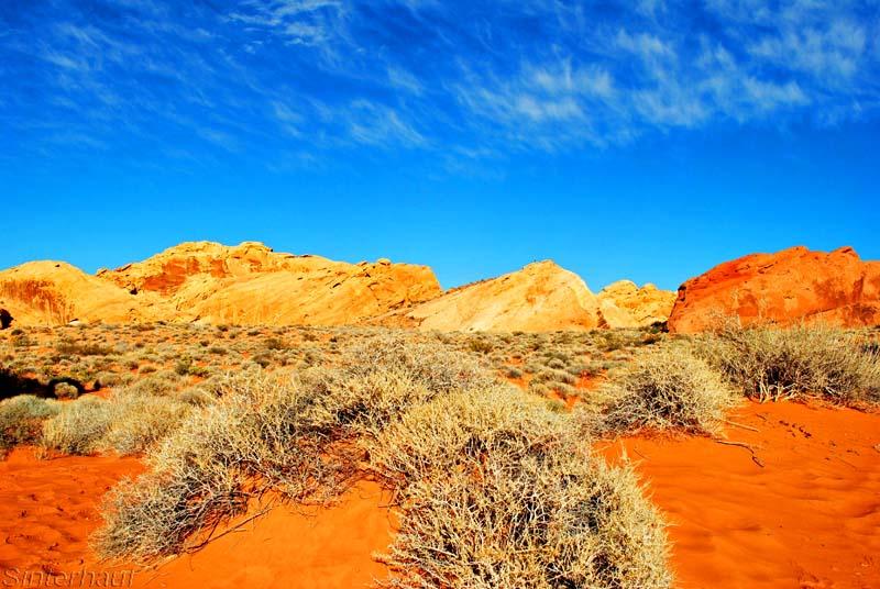 Roter Sandstein im Valley of Fire