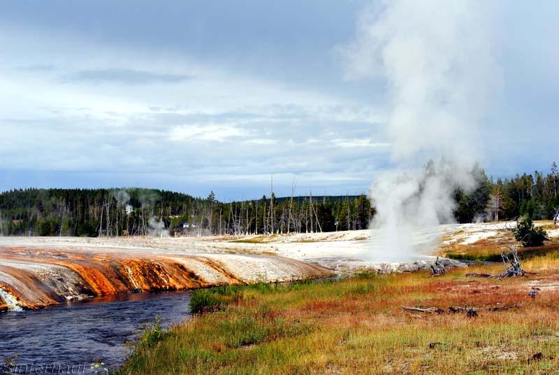 Geothermales Feld im Yellowstone NP