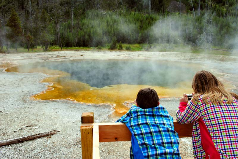 Natur entdecken im Yellowstone NP