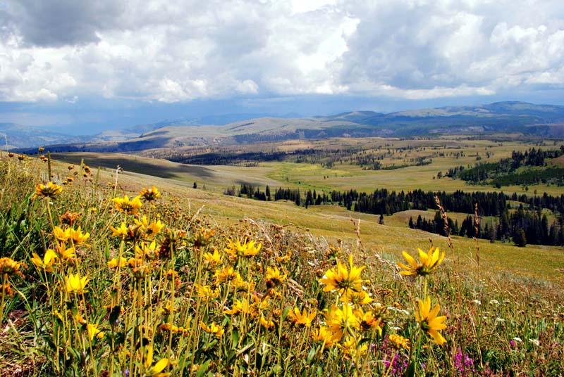 Der Yellowstone Nationalpark