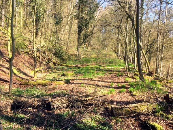 Erste zu erkennende Streckenführung bei Schonderfeld