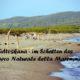 Italien – entspannter Abenteuerurlaub in der Südtoskana mit Kind und Jugendlichen