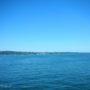 Der schöne Bodensee